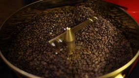 Vers geroosterde aromatische koffiebonen in een moderne koffie roosterende machine stock videobeelden