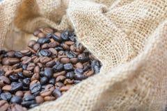 Vers geroosterde koffiebonen in een jutezak royalty-vrije stock afbeeldingen