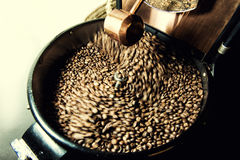 Vers geroosterde koffiebonen in een spinnende koelere professionele machine Royalty-vrije Stock Afbeeldingen
