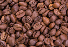 vers geroosterde koffiebonen, robusta arabica, mengeling, macrofoto Stock Foto's