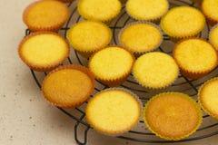 Vers gesteund cupcakes op een steunend rek. SDF Royalty-vrije Stock Afbeeldingen