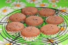 Vers gesteund cupcakes op metaalnet die zich calmen Stock Fotografie