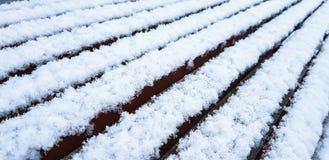 Vers gevallen witte koude sneeuwvlokken op een bevroren houten bank stock afbeeldingen