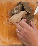 Vers gevangen oester klaar te openen Stock Fotografie