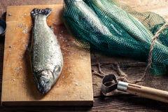 Vers gevangen vissen in het net voor diner Stock Foto's
