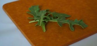 Vers groen organisch arugulablad op houtvezelplaat stock fotografie