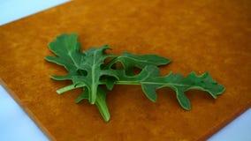Vers groen organisch arugulablad op houtvezelplaat royalty-vrije stock foto's