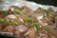 Vers kebab met greens Stock Foto