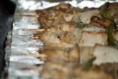 Vers kebab met greens Royalty-vrije Stock Afbeeldingen