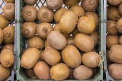 Vers kiwifruit in dozen op vertoning bij markt stock afbeelding