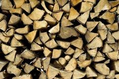 Vers le haut coupés arbres de bouleau Photo stock