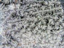 Vers le haut de Jack Frost étroit Photos libres de droits