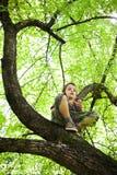Vers le haut dedans d'un arbre Images libres de droits