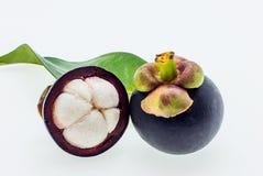 Vers mangostanfruit op witte achtergrond Stock Afbeeldingen