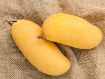 Vers organisch traditioneel Thais mango's hoog vitaminen en mineraal Stock Afbeeldingen