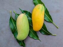 Vers organisch traditioneel Thais mango's hoog vitaminen en mineraal Stock Fotografie