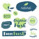 Vers, organisch, vrij gluten, 100% bio, premiekwaliteit, plaatselijk Royalty-vrije Stock Afbeeldingen