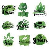 Vers, organisch, vrij gluten, 100% bio, premiekwaliteit, plaatselijk Royalty-vrije Stock Foto's