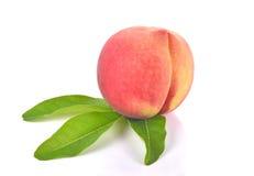 Vers perzikfruit op witte achtergrond Royalty-vrije Stock Foto