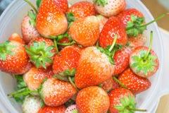 Vers rood Aardbeienfruit Stock Foto's