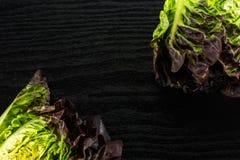 Vers ruw groen slarood weinig gem op zwart hout stock foto's