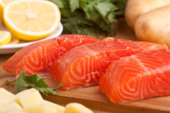 Vers Salmon Pieces royalty-vrije stock foto's