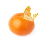 Vers sappig die mandarijnfruit over wordt geïsoleerd Stock Foto's