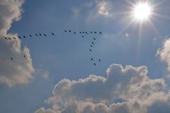 Vers The Sun Image libre de droits