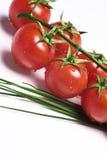 Vers tomaten en bieslook Stock Afbeeldingen