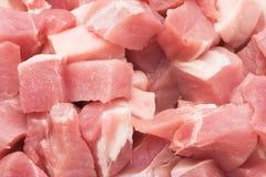 Vers varkensvleesvlees Royalty-vrije Stock Afbeeldingen