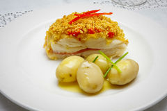 Vers Vissen Gastronomisch Diner stock afbeelding