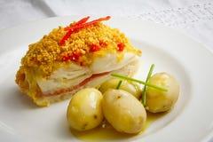 Vers Vissen Gastronomisch Diner - Voorraadbeeld royalty-vrije stock fotografie