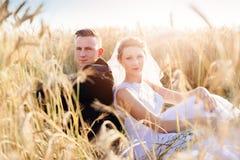 Vers wed bruid en bruidegom het stellen op tarwegebied royalty-vrije stock fotografie