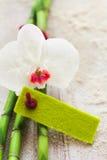 Vers wit orchidee en bamboe met een lege markering Stock Fotografie