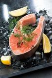 Vers zalmlapje vlees met dille en citroen op verticaal ijs, Stock Afbeelding
