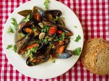 Vers Zeevruchten Gastronomisch Diner - Voorraadbeeld royalty-vrije stock foto