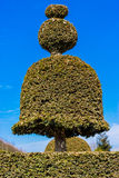 Versailles garden Royalty Free Stock Images