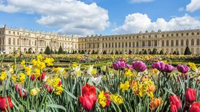 Versailles, France - April, 2012: Gardens of the Versailles in Spring time with colorfu flowers, Palace near Paris, France. Versailles, France - April, 2012 royalty free stock image