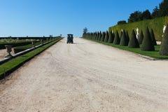 In Versailles garden. Royalty Free Stock Images