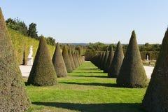 In Versailles garden. Royalty Free Stock Photography
