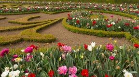 Versailles Gardens Flowers and Grounds Stock Photos