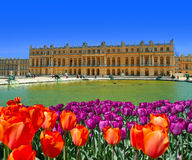 Versailles Royalty Free Stock Images