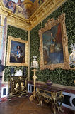 Versailles Palace Paintings Stock Image