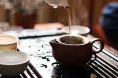 Versamento del tè di Puer dalla teiera a cerimonia di tè del cinese tradizionale Insieme di attrezzatura per tè bevente Fotografie Stock Libere da Diritti
