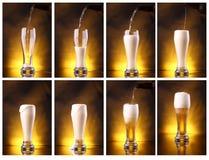 Versamento della birra chiara Fotografia Stock Libera da Diritti