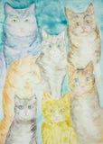 Versammlung der unterschiedlichen Art der Katzen mit einem Türkishintergrund lizenzfreie abbildung