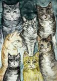 Versammlung der unterschiedlichen Art der rustikalen Katzen mit einem Türkishintergrund lizenzfreie abbildung