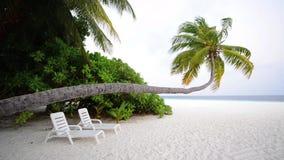 Versanden Sie Strand und Meereswogen, männliches Südatoll maldives stock video footage