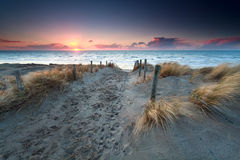 Versanden Sie Weg zum Nordseestrand bei Sonnenuntergang lizenzfreies stockfoto