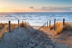 Versanden Sie Weg zur Nordseeküste bei Sonnenuntergang stockfotografie